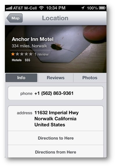 Cockroach Photo Apple Maps
